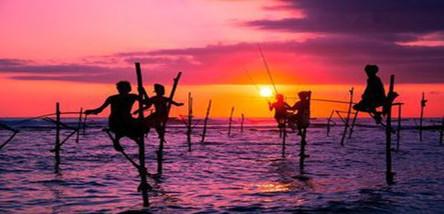 重庆到斯里兰卡经典七日游