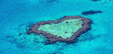 重庆到澳大利亚旅游:生态(澳墨)双岛10日
