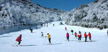 金佛山北坡滑雪、古佛洞一日游(套餐)