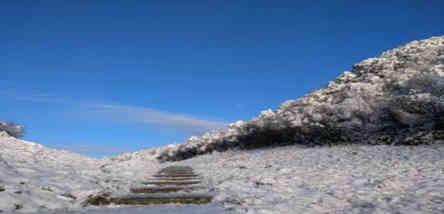 南川金佛山(北坡滑雪)一日游